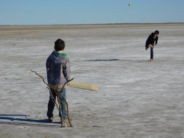 Lake Eyre- Cricket (5)