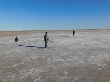 Lake Eyre- Cricket (9)