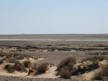Lake Eyre South Lookout