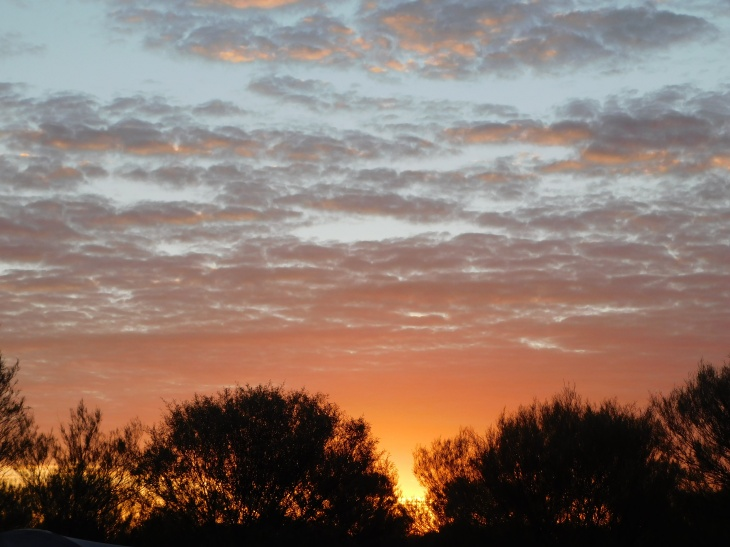 Lamberts sunrise