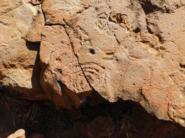N'dahla Gorge Petrogliphs (5)