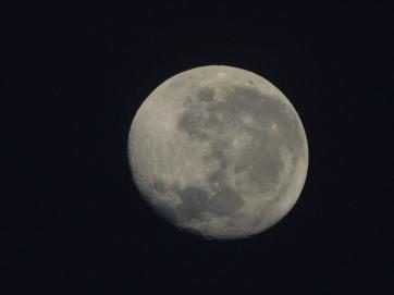 Nhlunbuy moon