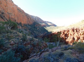 Ormiston Gorge (5)
