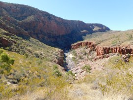 Ormiston Gorge (6)