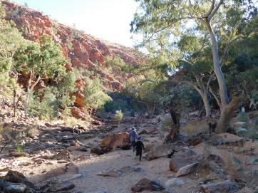 Redbank Gorge (6)