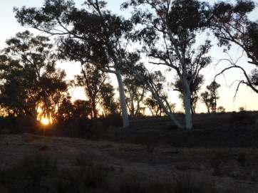 Redbank Waterhole Camp sunrise