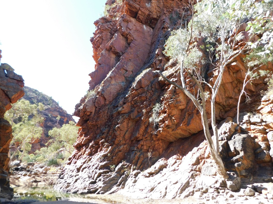 Serpentine Gorge (2)