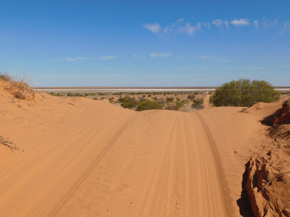 Simpson Desert (21)