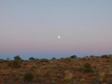 Simpson desert (3)