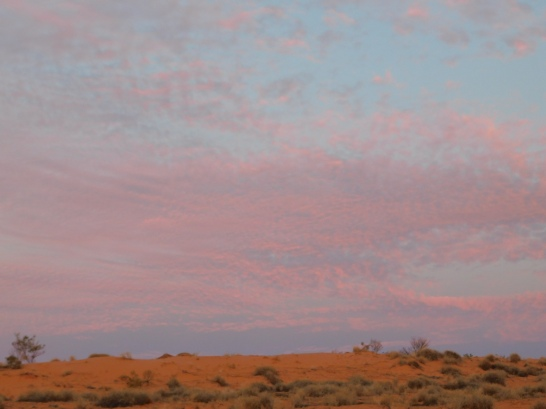 Simpson Desert (33)