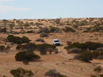 Simpson Desert (38)