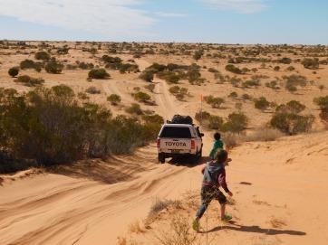 Simpson Desert (39)