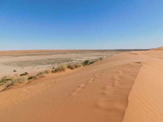 Simpson Desert- Big Red (5)