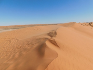 Simpson Desert- Big Red (7)