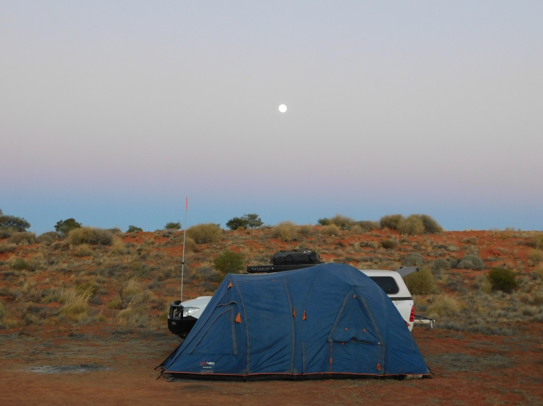 Simpson Desert- Camp 2 (2)