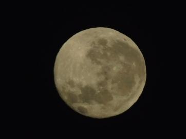 Simpson Desert- moon