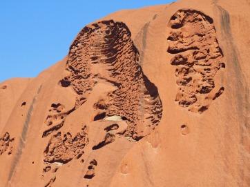 Uluru Base Walk (10)