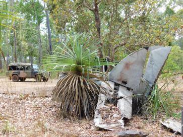Bamaga - DC3 Plane Wreck (3)