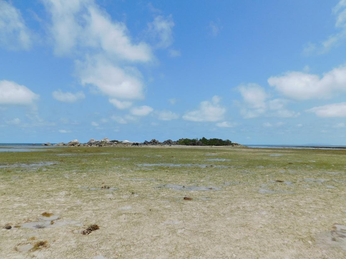 Chilli Beach Island