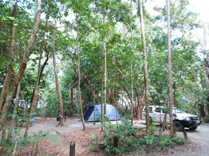 Daintree Camp (2)