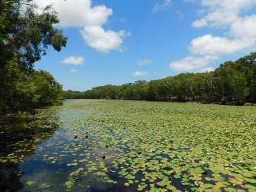 Keatings Lagoon (3)
