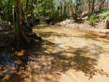 Nhulunbuy freshwater creek