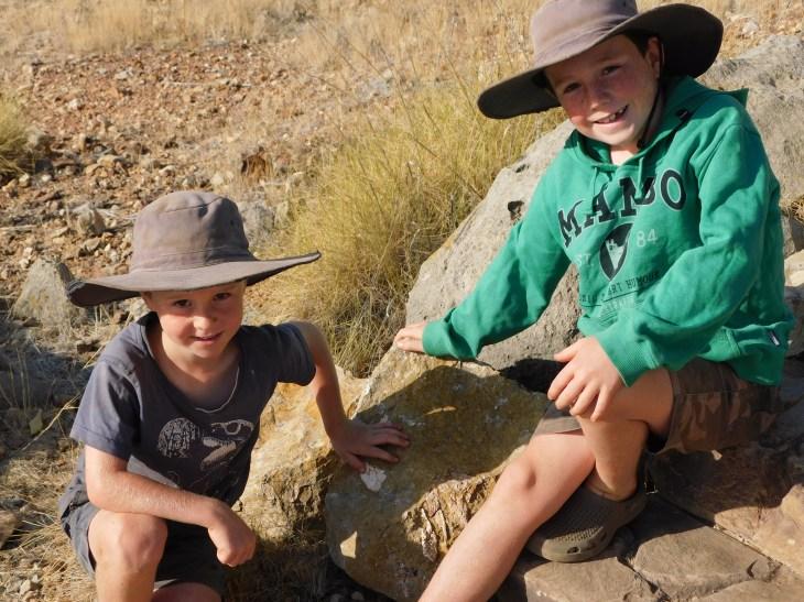 Riversleigh Fossils (11)
