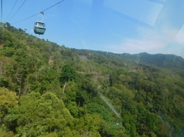 Cairns Skyrail (3)