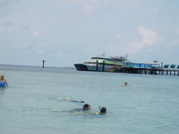 Green Island (2)