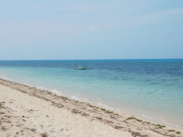 Green Island (6)