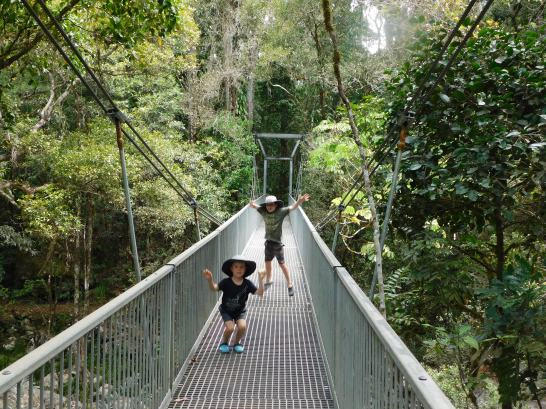 Mossman Gorge- dont rock the bridge (2)