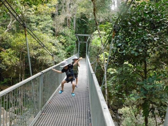 Mossman Gorge- dont rock the bridge