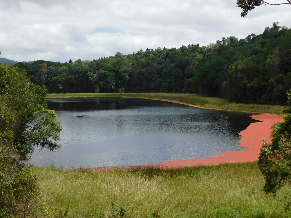 Tinaroo- Volcanic Lake