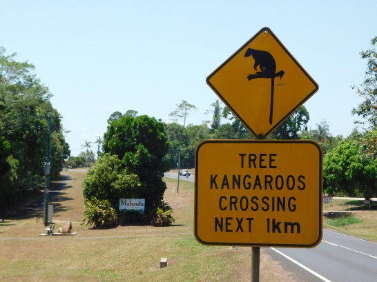 Tree Kangaroo sign