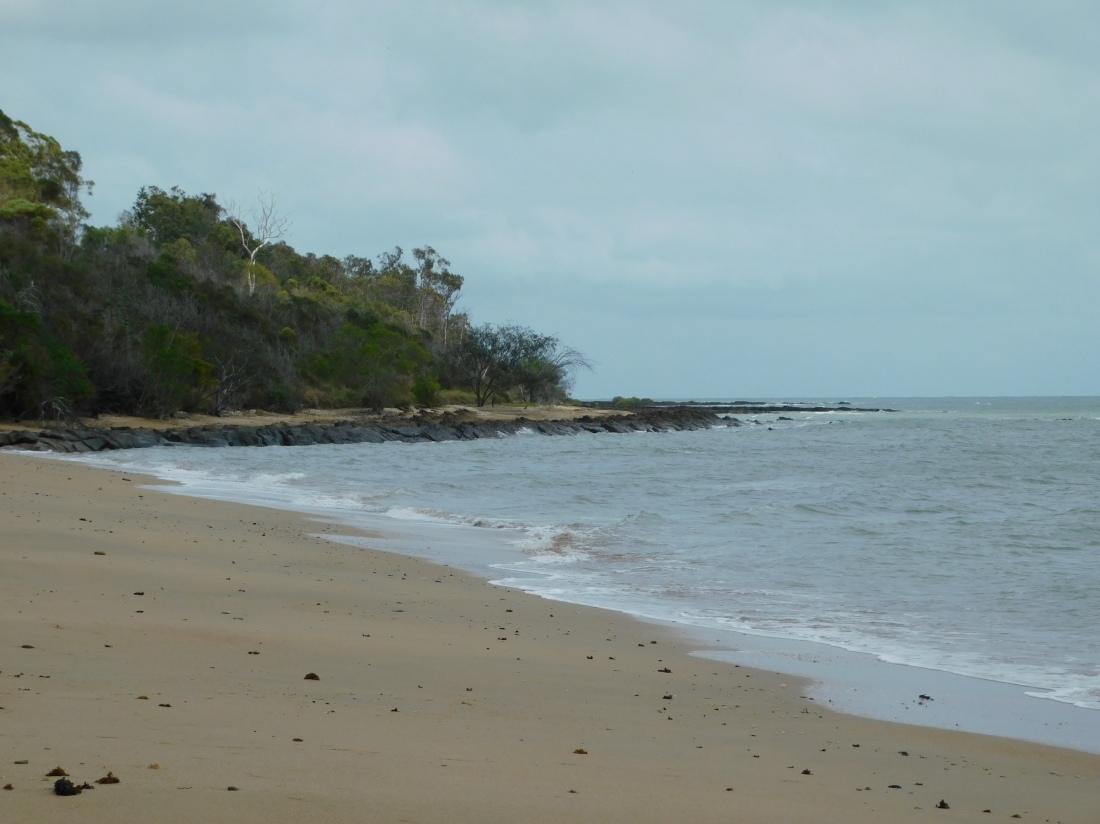 Harvey Bay (2)