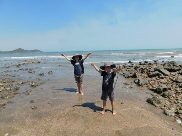 Cape Hillsborough- successful turtle release